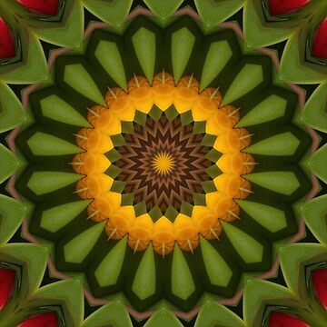 Yellow and green flower mandala by CircusValley