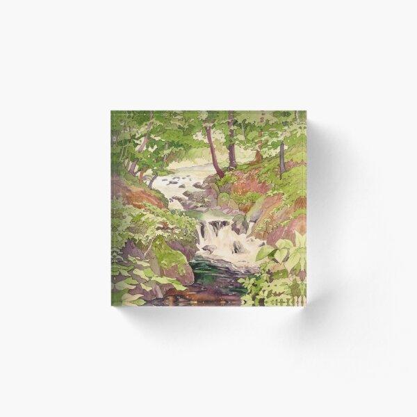 Afon Clywedog Acrylic Block