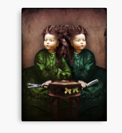 The hair affair Canvas Print