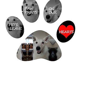 Tilly - Dog by gemzysworld