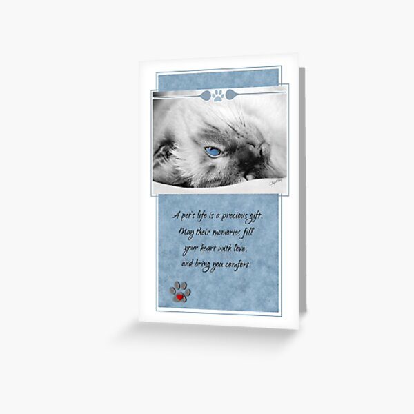 Loss of a Cat Pet Sympathy Siamese Blue and White Sentimental  Greeting Card