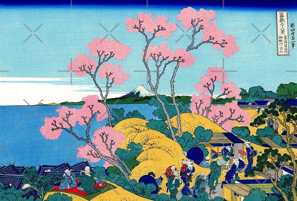 Fuji From Gotenyama by diane  addis