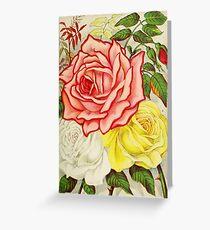 Vintage Multi Colored Rose Illustration (1886) Greeting Card
