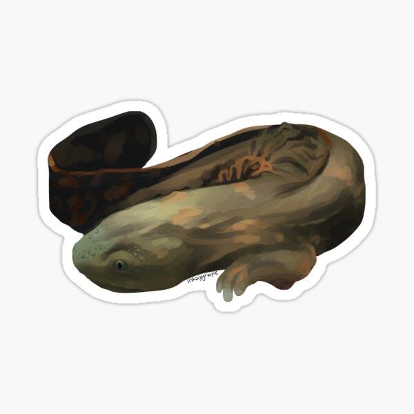 hellbender Sticker