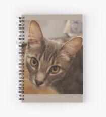 Ozzy le chaton Cahier à spirale