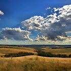 Donny Brook Hills - Victoria by Joy Watson
