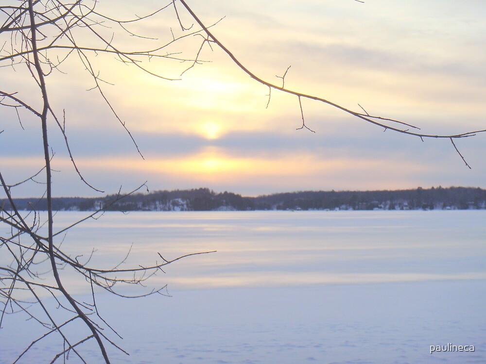 Winter II by paulineca