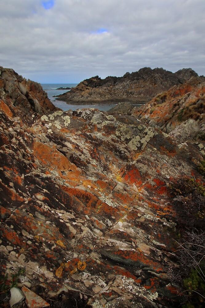 lichen covered outcrops at Sarah Ann Rocks (Tasmania) by Gaylene Norton