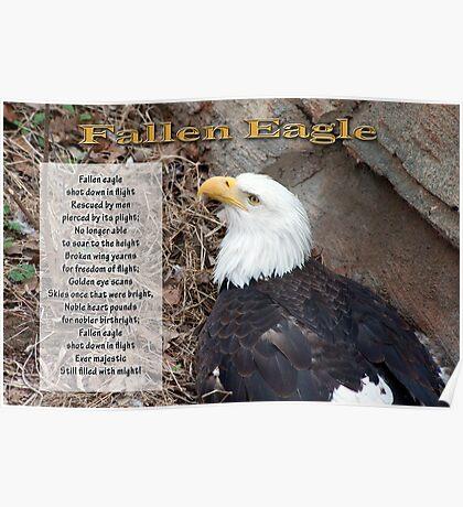 Fallen Eagle Poster