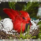 Christmas Cardinal by KylaStanAuthor