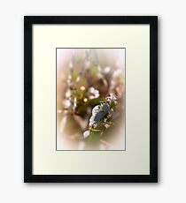 April Flowers Framed Print