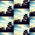 Sunset Pine by BrookeNilsson