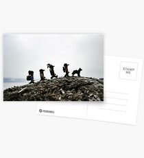 Camping on the Coast Postcards
