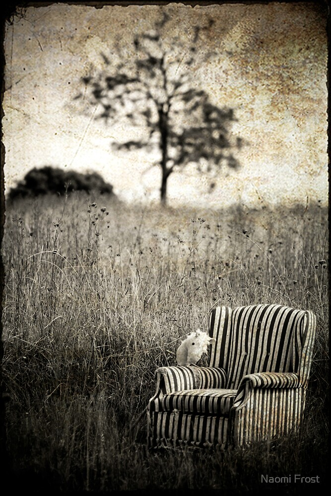 Portrait Of A Chair by Naomi Frost