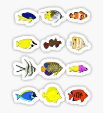 reef fish Sticker