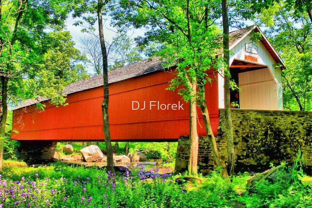Sheard's Mill Covered Bridge by DJ Florek