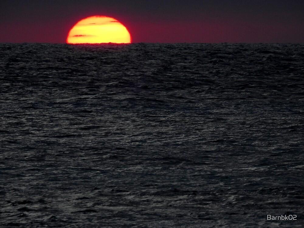The Last of the Sun by Barnbk02