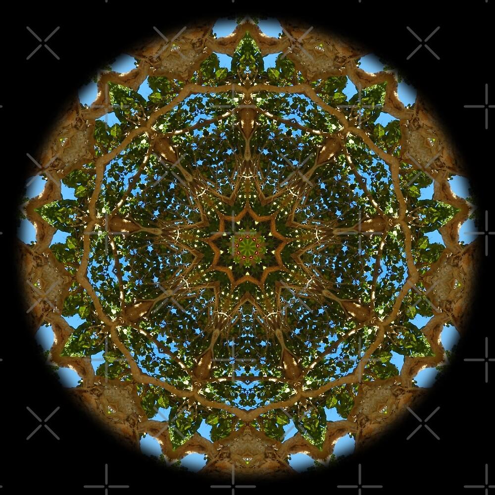 Estrella.9 Crucible of Caribbean light by ppdopico