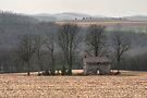 Cold Rain On The Forgotten Farmhouse by Gene Walls