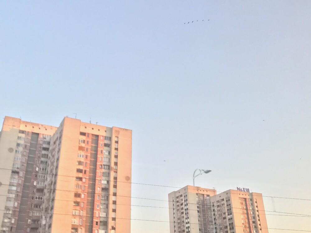 Buildings by zalaflo