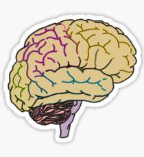 Brain Games Sticker