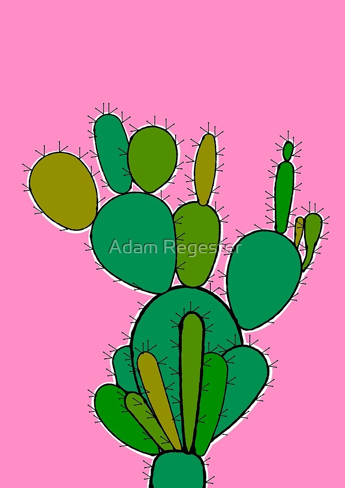 Cacti by Adam Regester