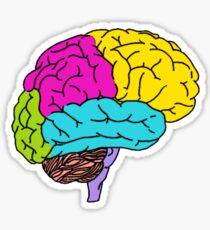 Neurotype Sticker