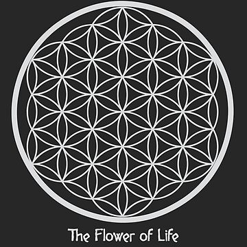 Sacred Geometry - The flower of Life by RAFAROMAN