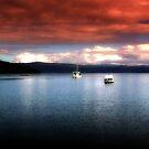 Eggs and Bacon Bay - Tasmania  by cjcphotography