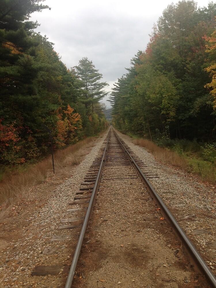 Rails by RantPie