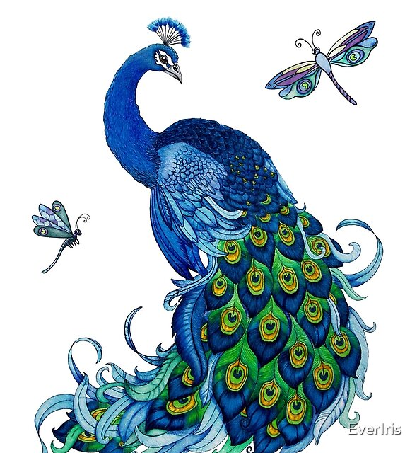 Peacock and Dragonfly Design by EverIris
