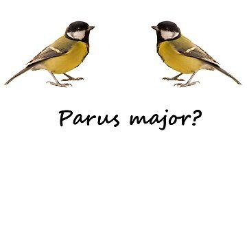 Parus major? by jon77lees