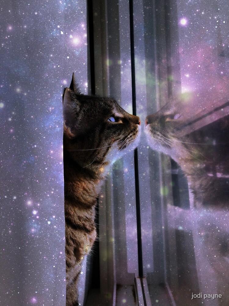 Space kitty by jodi payne