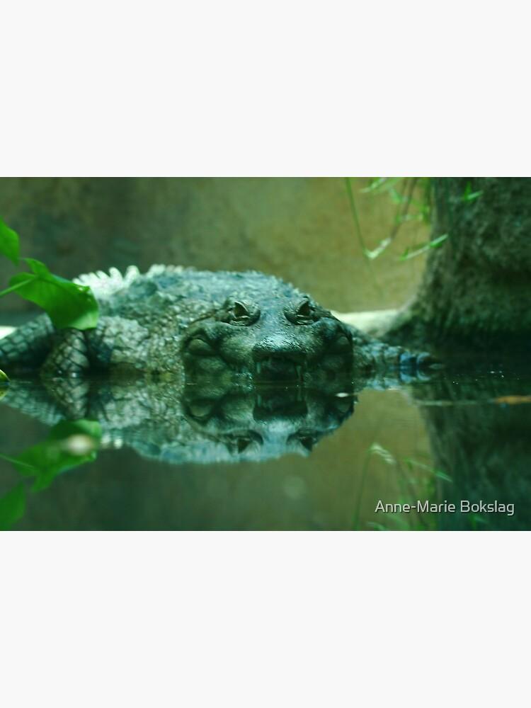 Mr. Croc by amb1946