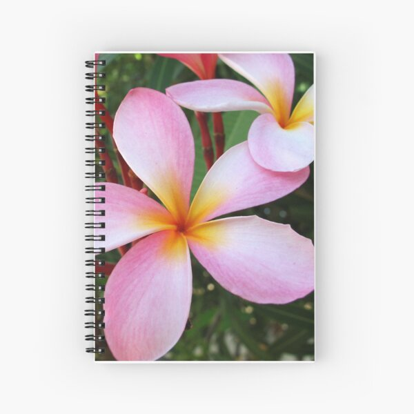 Pink Frangipani (Plumeria)  Spiral Notebook