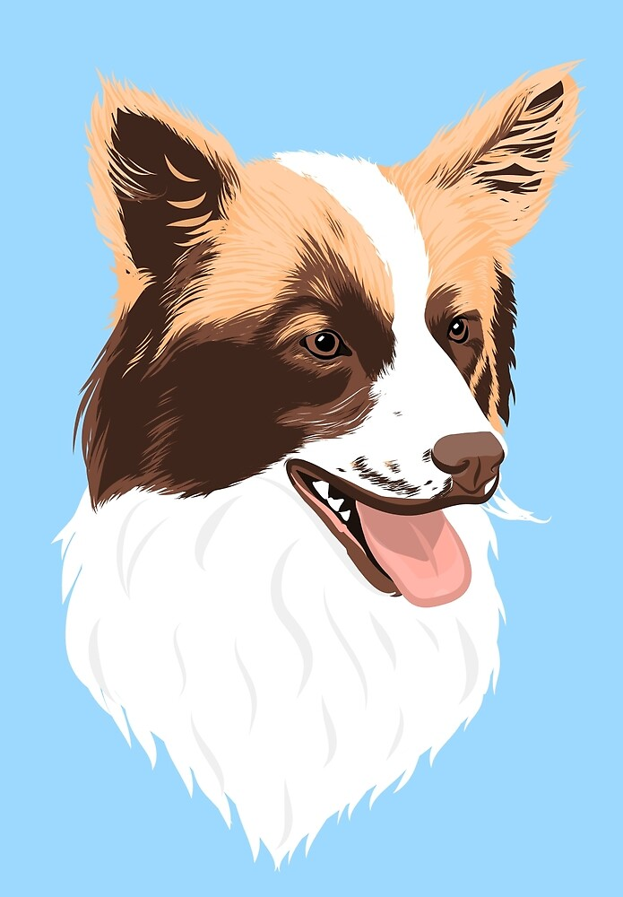 Mini Australian Shepherd - Rufus by Ali Scarlett Adams