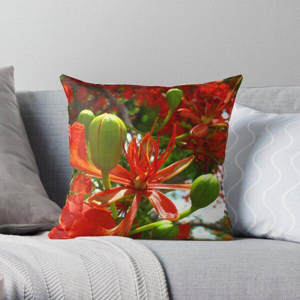 Royal Poinciana Bloom II Throw Pillow