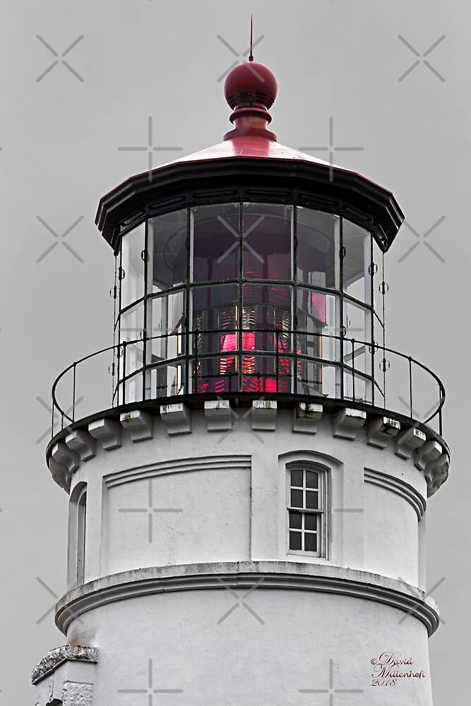 Umpqua Lighthouse by David Millenheft Photography