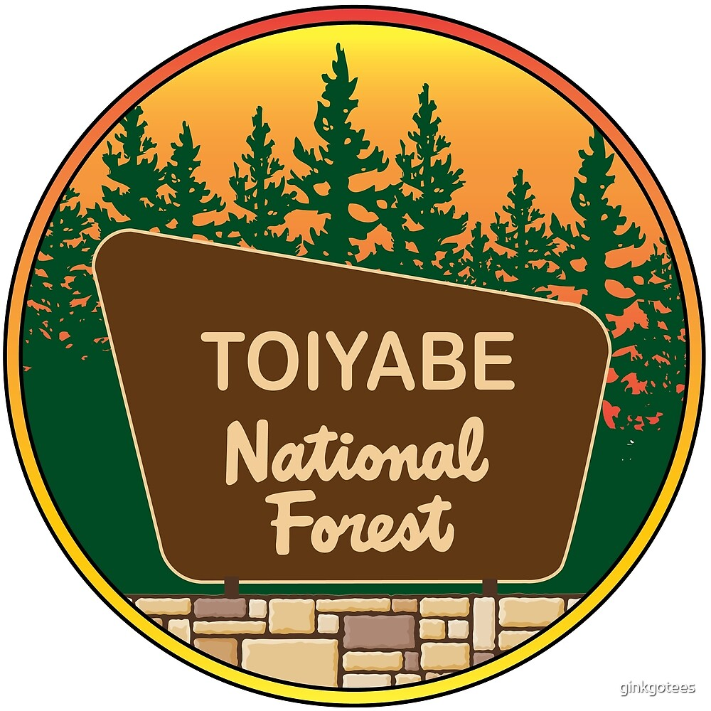 Toiyabe National Forest by ginkgotees