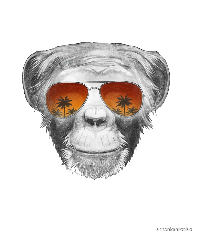 Macaco  by antoniomessias