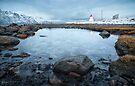 Cold Comfort by Mieke Boynton