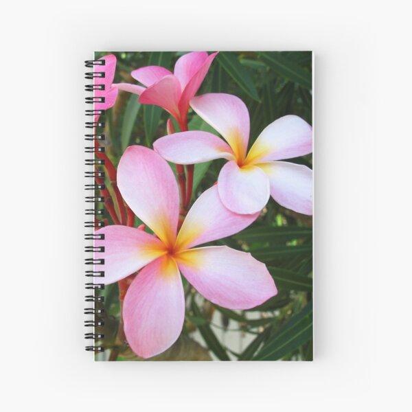 Pink Frangipani (Plumeria) II Spiral Notebook