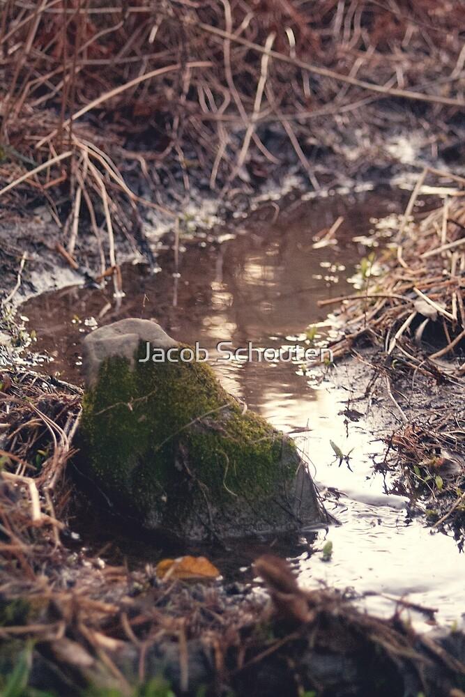Mossy Rock by Jacob Schouten