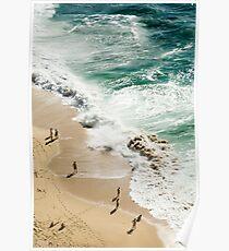 Beach birds eye view Poster