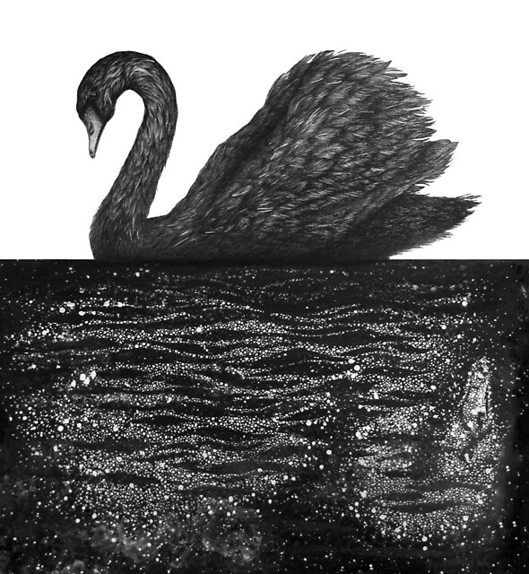The Other Side: Black Swan by ECMazur