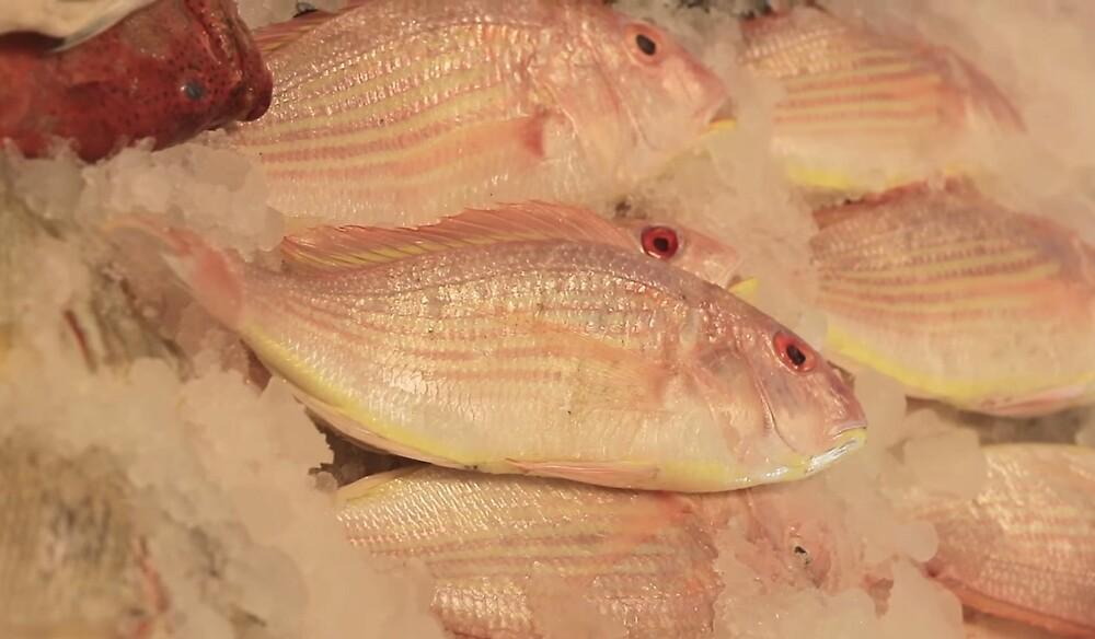 Fish Market by zhirobas