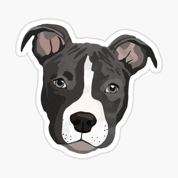 Pit Bull/ Puppy/ Blue Pit/ Dog/ Gray Pit Bull/ Blue Pit Bull/ Pet/ Cute Sticker