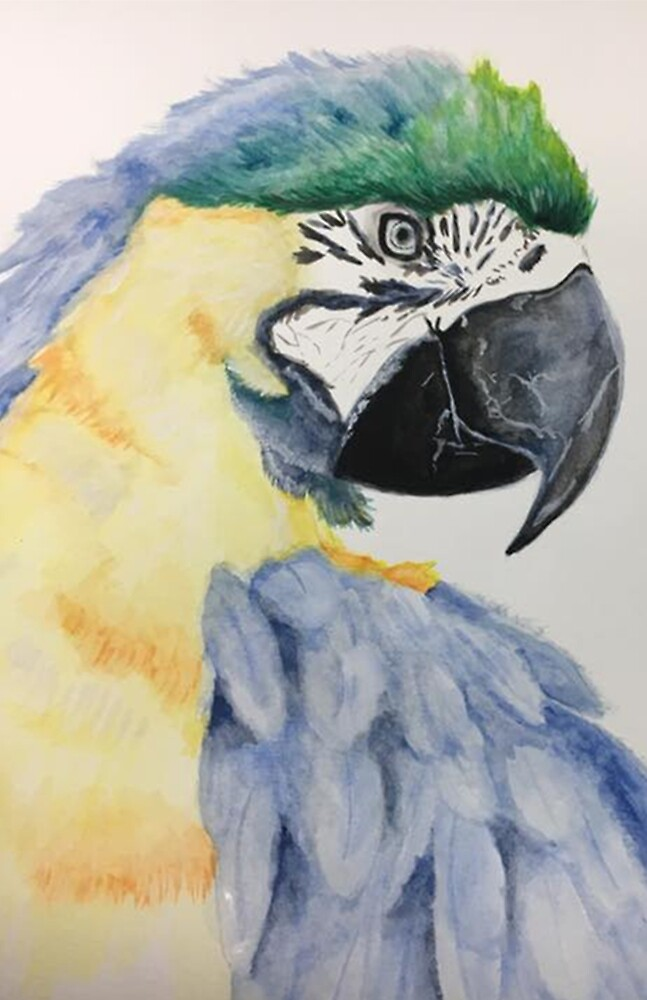 Watercolor Parrot by shallowshark