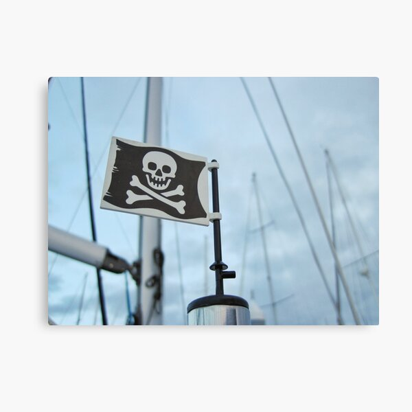 Windy day pirate flag Metal Print