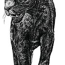 BLACK PANTHER by AirDrawn